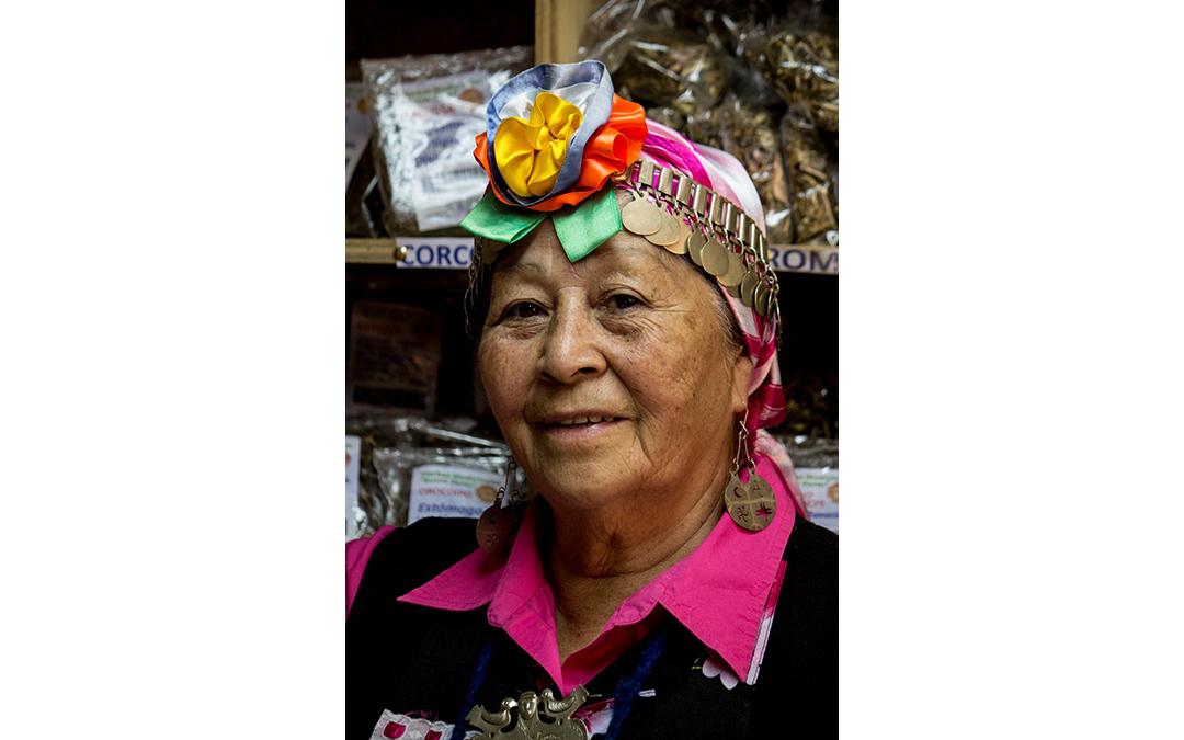 Lawentuchefe Sylvia Caneo: todo lo que sacamos de la tierra es medicinal